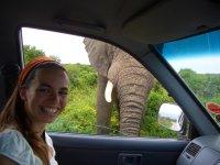 Elefant im Abstand von 1m zu Viktoria
