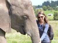 Viktoria im Knysna Elephant Park